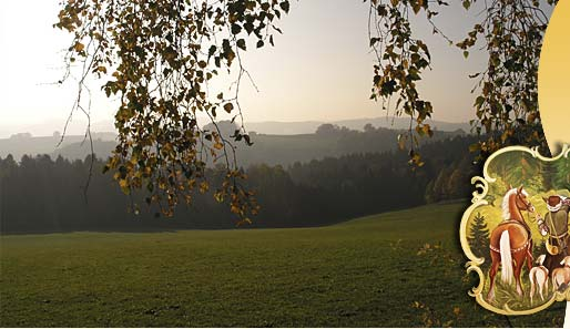 Bayerischer Wald Anfahrt nach Bodenmais